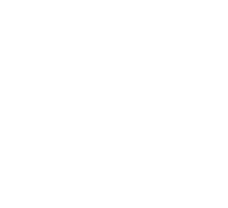 Dresdner Winter